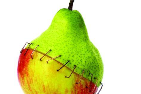 Alimenti Geneticamente Modificati Ogm Pro E Contro Da Sapere Sugli Organismi Geneticamente