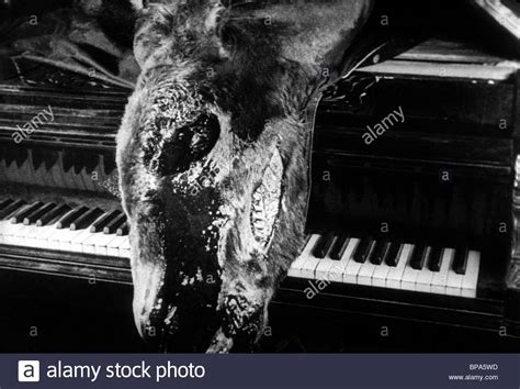 chien andalou un andalusian donkey dog dead piano 1929 alamy