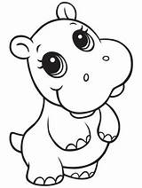 Coloring Animal Hippo Drawings Fiona Animals Drawing Cartoon Sheets Aquatic Semi Colouring Gaddynippercrayons Wild Visit Area sketch template