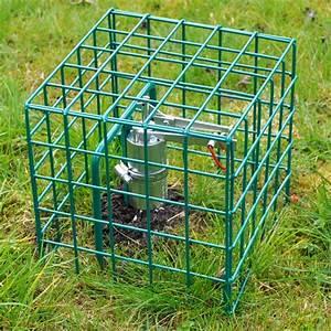 Mäuse Im Garten Vertreiben : maulwurf aus garten vertreiben ber ideen zu maulwurf vertreiben auf pinterest 20 wege einen ~ Whattoseeinmadrid.com Haus und Dekorationen