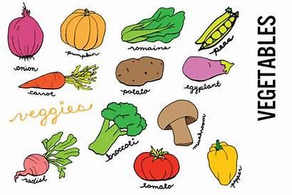 Clip Vegetables Vegetable Doodle Clipart Domain Veggies