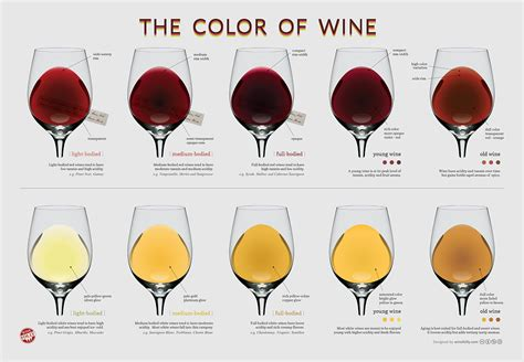 wine types the wine color chart wine folly