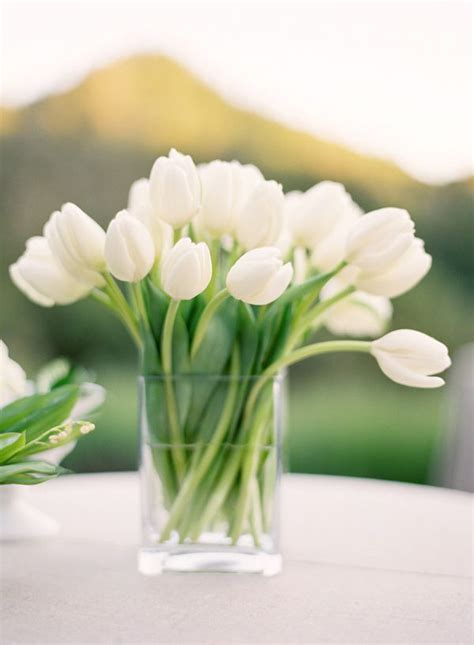 how to care for tulips how to care for cut tulips sugar and charm sweet recipes entertaining tips lifestyle