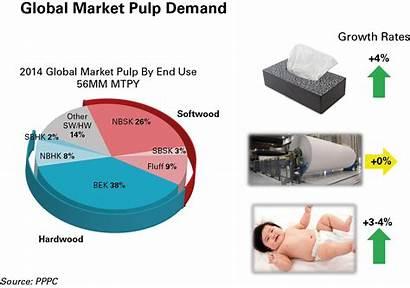 Pulp Paper Fluff Market Outlook Trends Industry