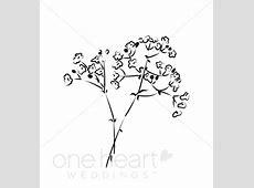 Baby Breath Flower Clipart Wedding Flower Clipart