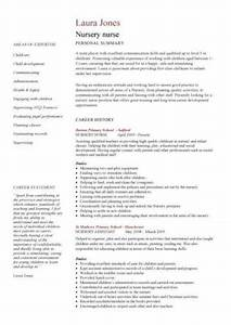 English Cv Template Word Academic Cv Template Curriculum Vitae Academic Cvs