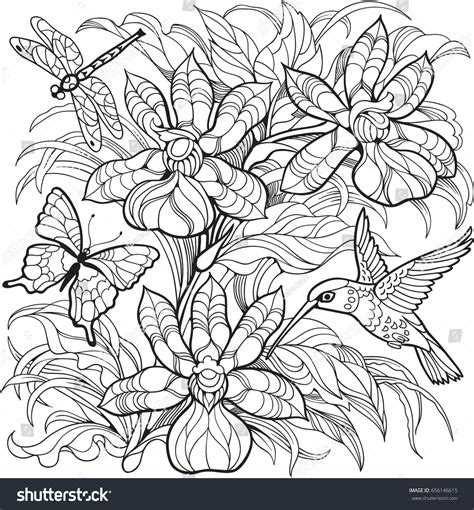 Coloring Pages Flowers Erflies And Hummingbirds Coloring