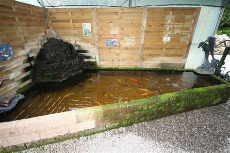 bassin de jardin pour poisson bassin de jardin
