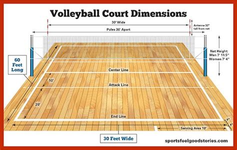 volleyball court dimensions net size  height sports