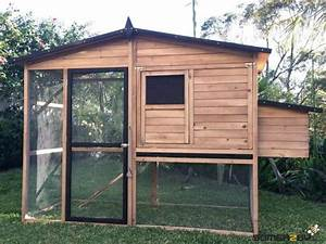 What Size Chicken Coop Do I Need For My Chickens