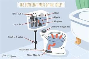 Understanding The Parts Of A Toilet