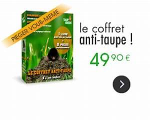 Produit Anti Taupe : taupier professionnel pi ge taupe et anti taupe ~ Premium-room.com Idées de Décoration