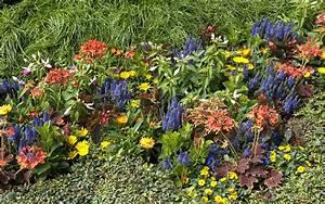 Blumenkübel Bepflanzen Sommer : grabbepflanzung f r den sommer ideen und tipps ~ Eleganceandgraceweddings.com Haus und Dekorationen