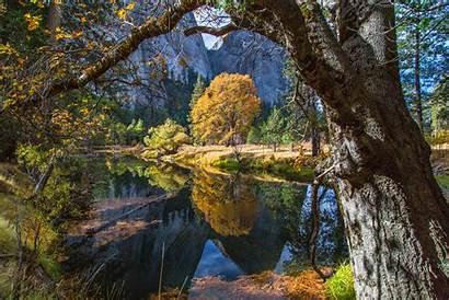 4k 8k Forest 5k Yosemite Apple Osx
