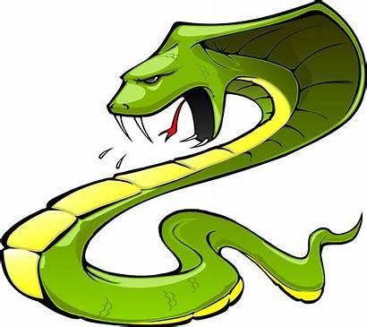 Viper Snake Clipart Head Clip Cliparts Animated