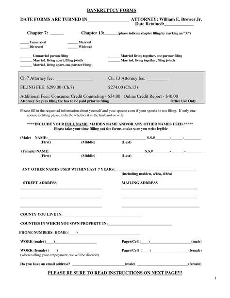 bankruptcy sample form bankruptcy sample form sample