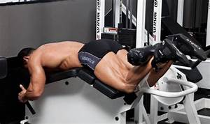 Lying Leg Curl Exercise Guide • Bodybuilding Wizard