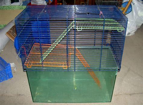 maison en cagne a vendre 28 images 403 interdiction cage grande perruche petit perroquet