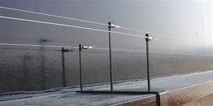 Bird Wire Systems