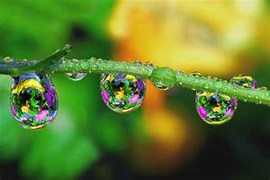Beautiful Macro Photography Of Droplets For Your ...