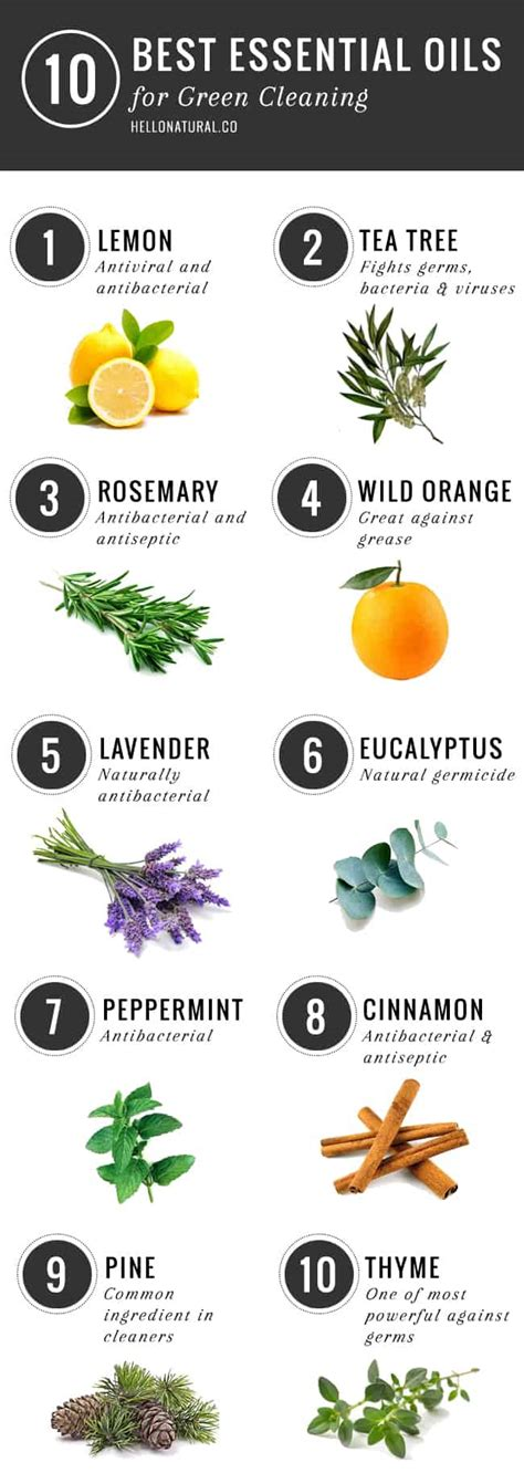 10 Best Essential Oils for Green Cleaning | Hello Glow