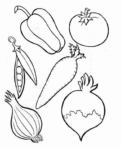 Coloring Vegetables Vegetable Templates Results