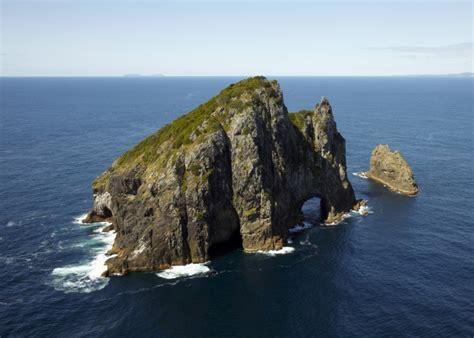 salt air scenic flights bay  islands    zealand