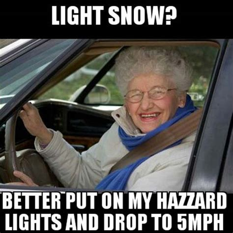 Driving In Snow Meme - the 18 best memes about the snow smosh