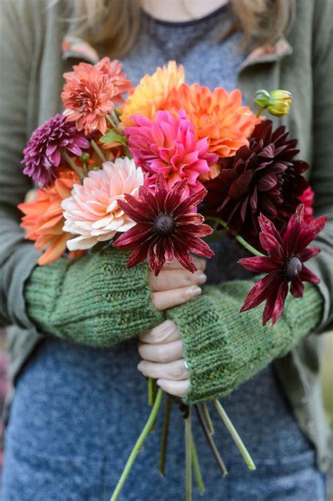 garden  flower photography  jason ingram green