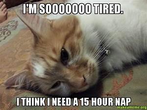 I'm sooooooo tired. I think I need a 15 hour nap - | Make ...