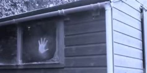 shed of grey fifty sheds of grey three in a shed spoof trailer