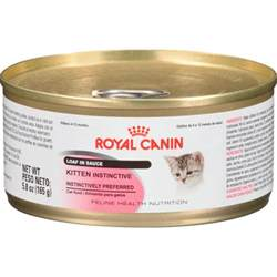 canin cat food royal canin kitten instinctive canned cat food petflow
