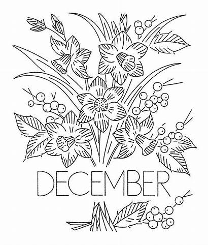 Flower Month Embroidery Patterns Transfers Transfer Flowers