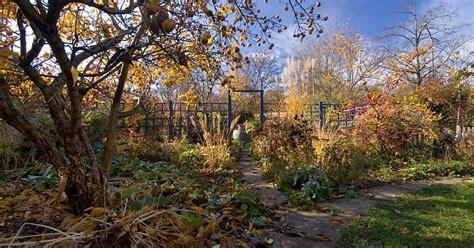 Garten Herbst Stauden Schneiden by Stauden Im Winter Nicht Alle Schneiden Mein Sch 246 Ner Garten