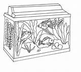 Fish Tank Coloring Aquarium Clipart Awesome Netart Background 52kb Drawings Webstockreview sketch template