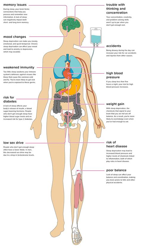 effects  sleep deprivation   body interesting