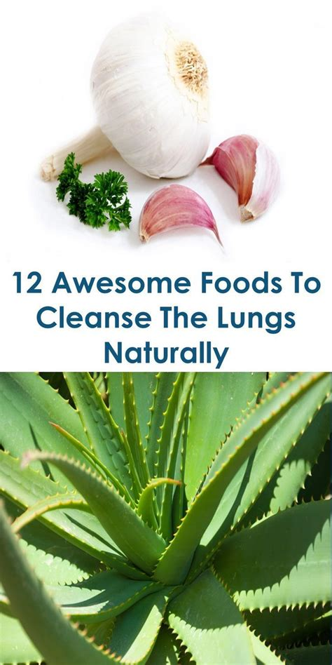 This Guide Shows The Following Lungs Cleaning Treatment
