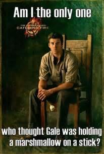 Hunger Games Memes Funny
