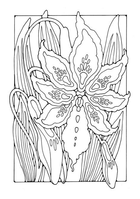 Franse Lelie Kleurplaat kleurplaat lelie afb 27754