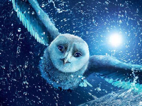 Animated Owl Wallpaper - owls wallpaper wallpaper
