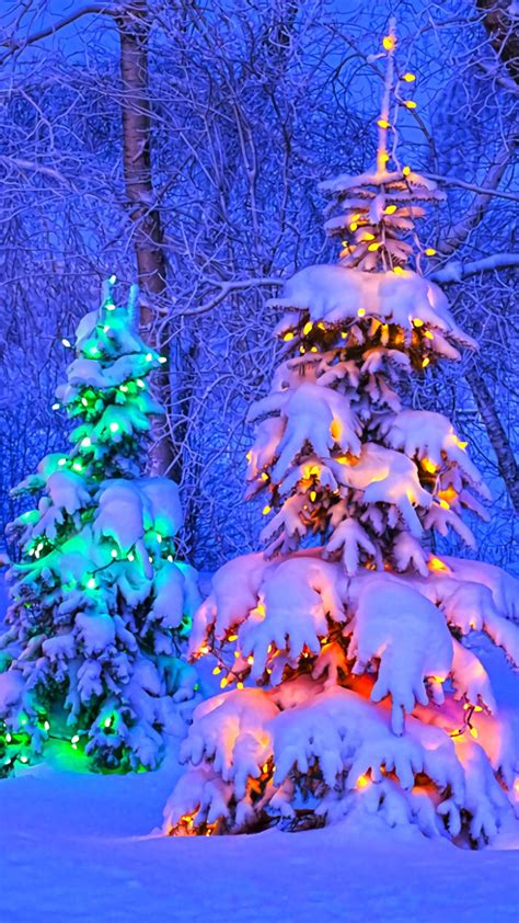 You'll find owls, snowman, holly and christmas tree designs. Christmas Trees Phone Wallpaper for iPhone iPad Android ...