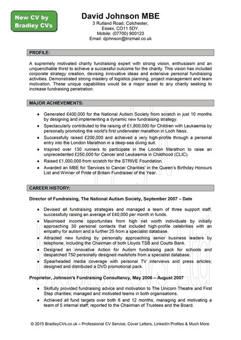 professional resume and cv writing professional curriculum vitae writing service