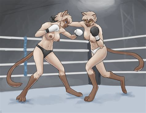 rule 34 absurd res anthro blue eyes boxing breasts brown fur clothed clothing conqista artist