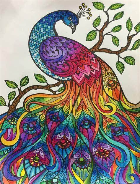 ideas  coloring books  pinterest adult