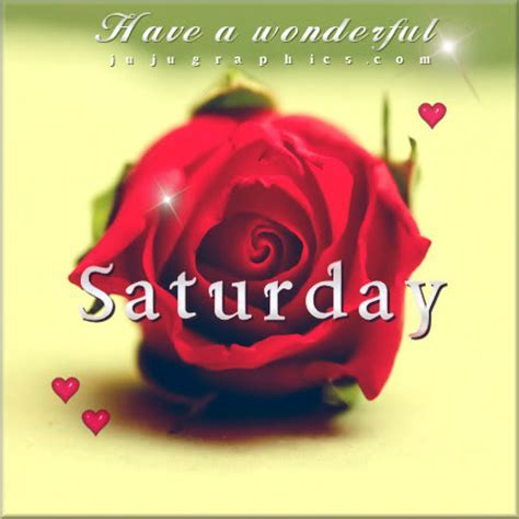 Have a wonderful Saturday red rose   Graphics, quotes