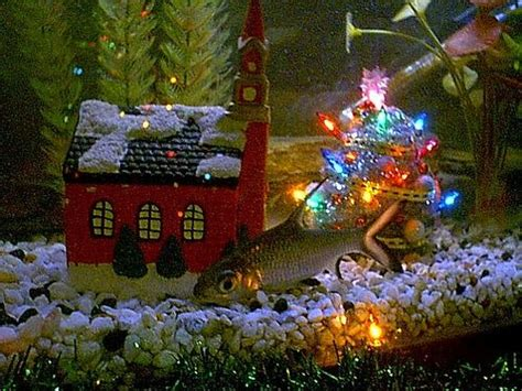 christmas fish tank decorations google search