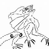 Neck Coloring Drawing Cowl Lizard Sketch Template sketch template