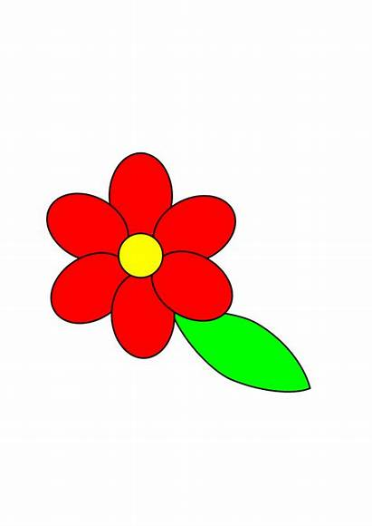 Flower Clipart Outline Leaf Petals Floral Clip