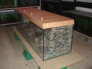 Bac A Vinyl : aquaplum 39 coraux fabrication d 39 aquariums ~ Teatrodelosmanantiales.com Idées de Décoration