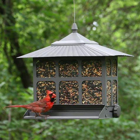 bird seed feeders pet squirrel be ii bird